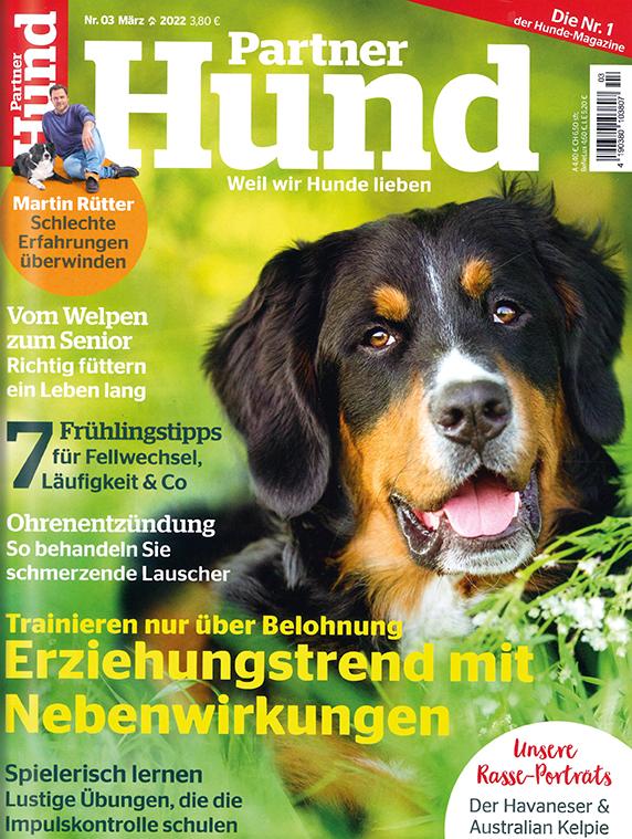Partner Hund im Lesezirkel mieten statt kaufen